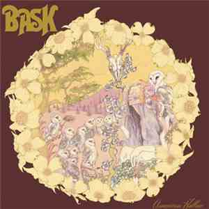 Bask  - American Hollow download free